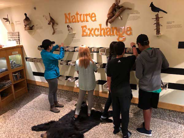 Five children examine bins at Exploration Place's Nature Exchange.