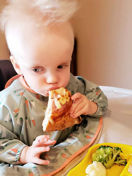A young toddler boy sits in high chair with a plate of a various foods in front of him while he munches on a piece of Hawaiian pizza.