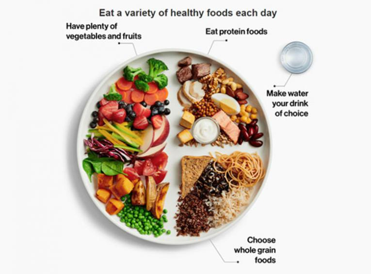 "An image of the updated ""healthy plate"" from the new Canada's Food Guide."