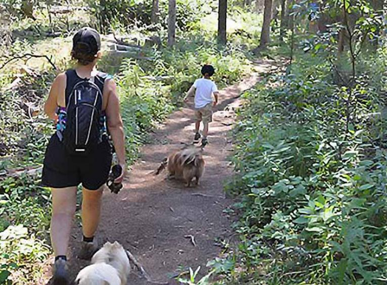 Mother and child walking on forest trail with two small dogs.