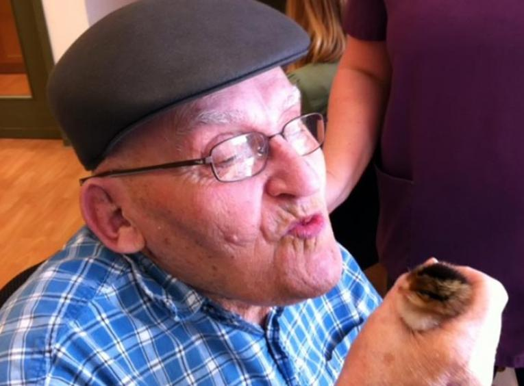 Elderly man holding a young chick in his hand,