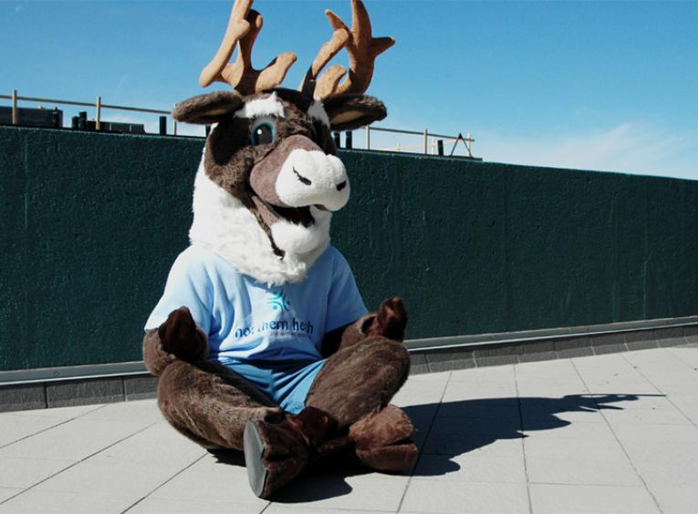 Spirit the caribou mascot outside sitting down meditating.