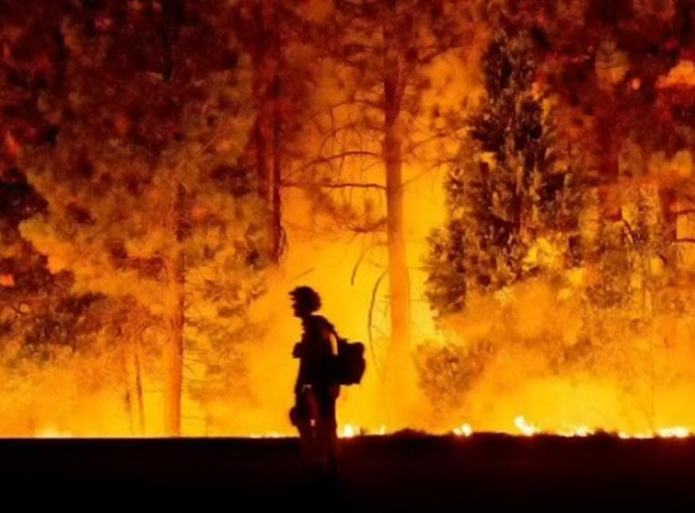 Fire fighter walking by forest fire.