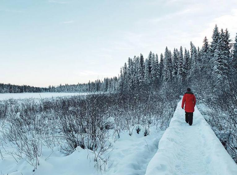 person in red jacket walks on snow covered path