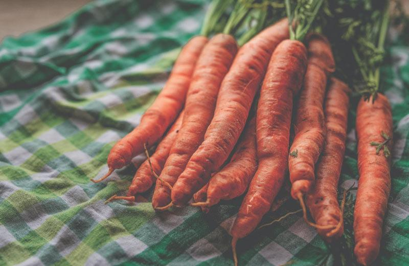 A bundle of carrots lays on a blanket.